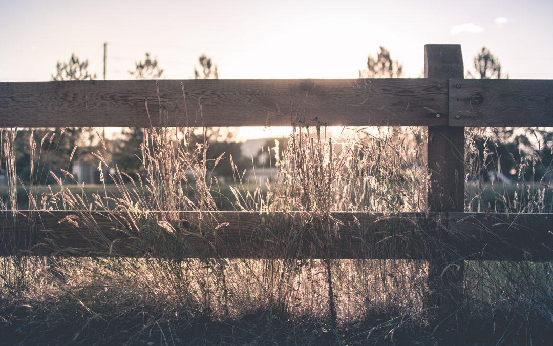 Mangler du robuste hegnspæle?